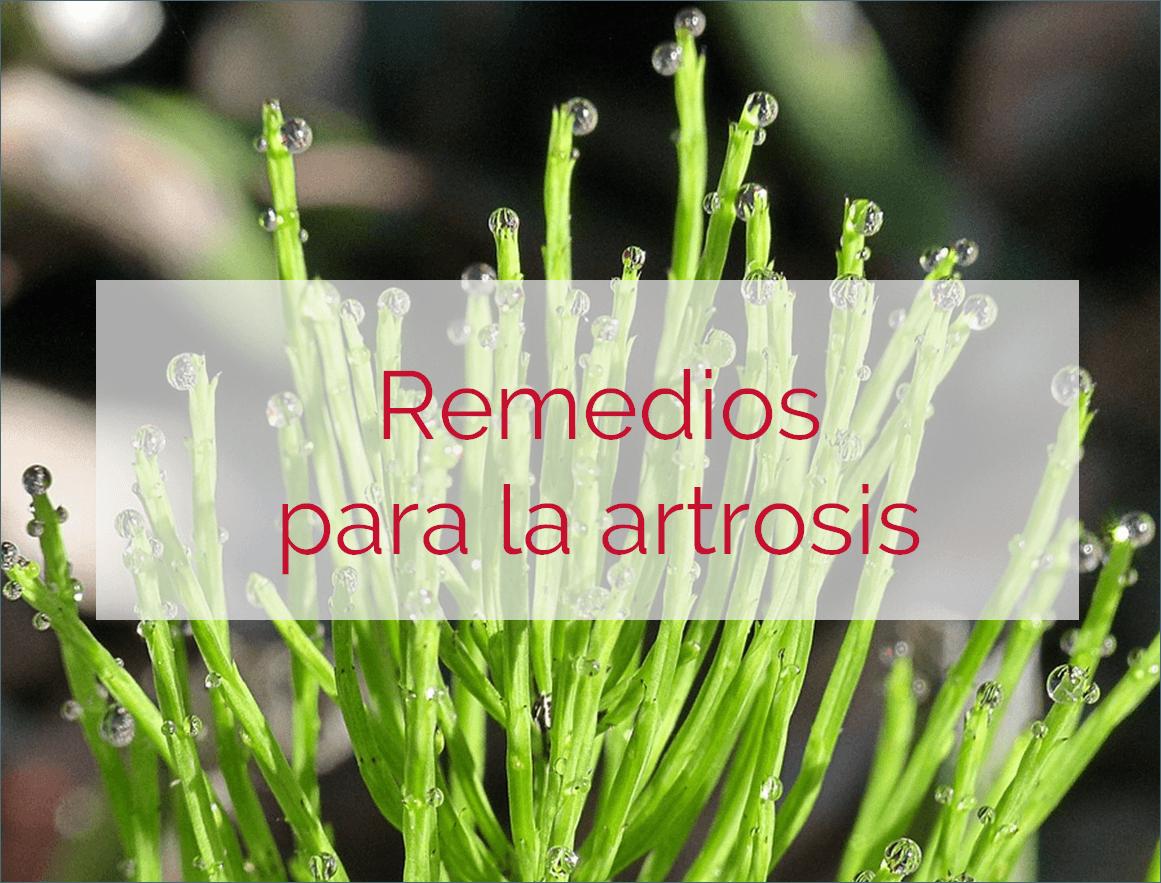 remedios artrosis